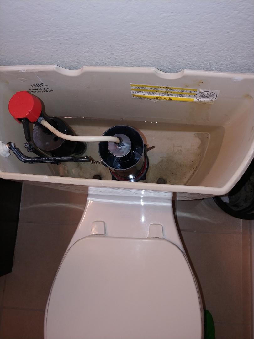 Hercules, CA - Diagnose leaking toilet