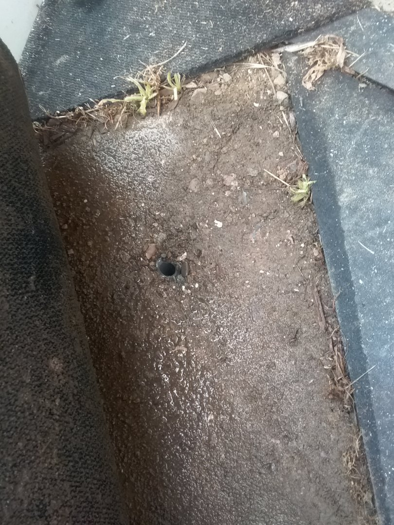 Vallejo, CA - Leak in the back yard