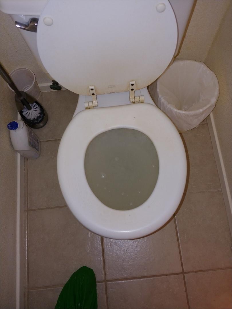 Davis, CA - Auger toilet