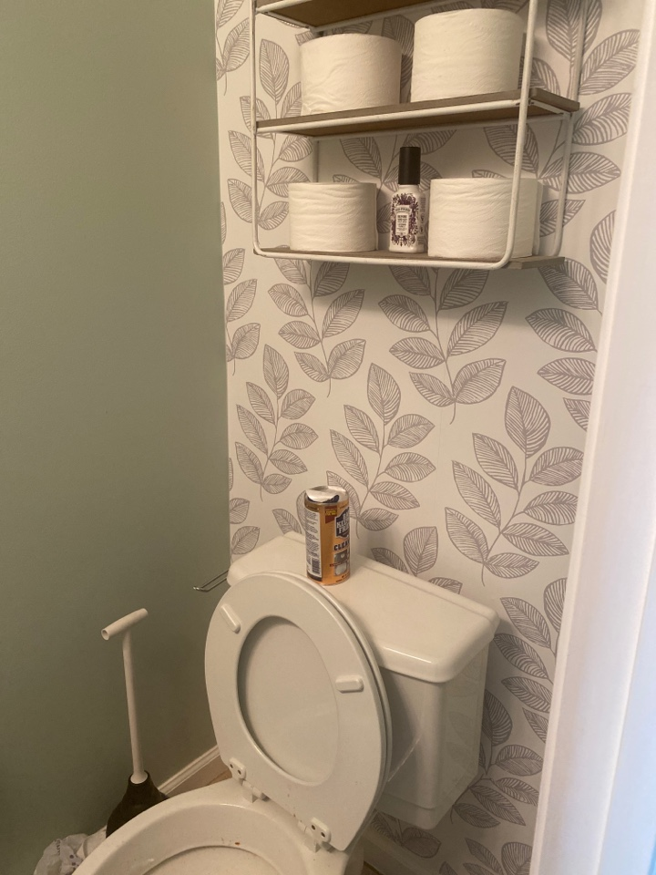 Arnold, MD - Unclogged toilet
