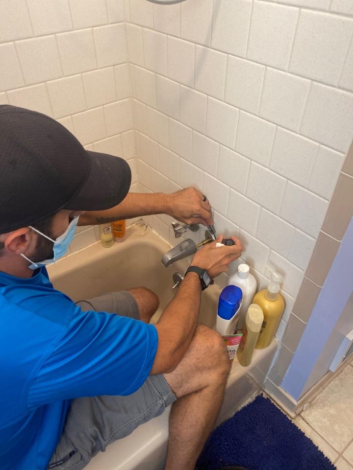 Pasadena, MD - Repair shower leaking shower valve.