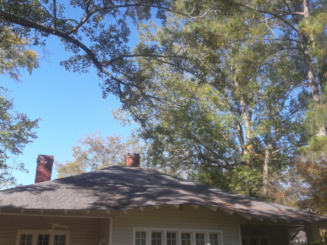 Columbia, SC - Roof inspection. Downtown Columbia.