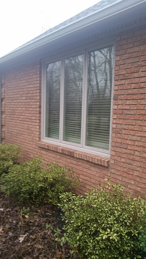 Nicholasville, KY - Another satisfied customer. Renewal windows phase 2