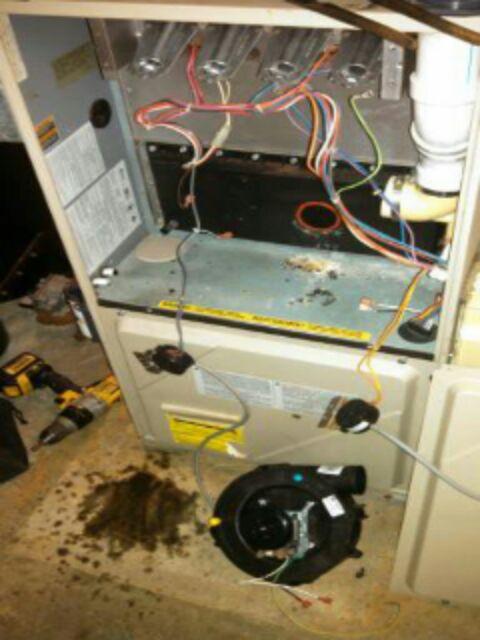 Windsor Charter Township, MI - furnace repair