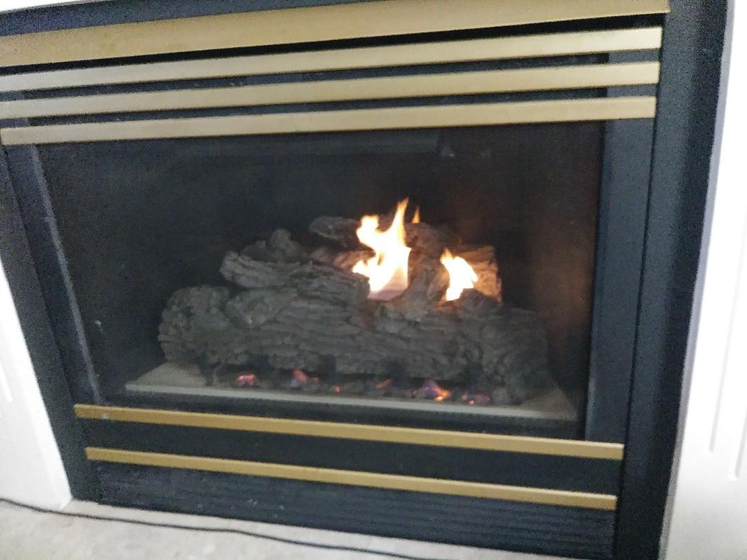 Lansing, MI - Fireplace repair amd cleaning
