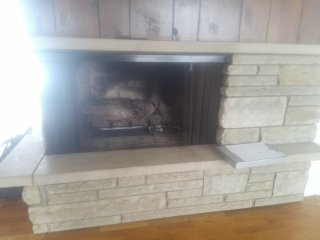 Lansing, MI - Inspection & cleaning of gas log fire place & cleaning of damper