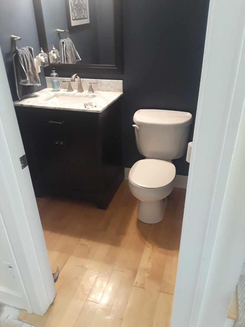 Cannon Township, MI - Getting ready to remove the toilet, vanity, shoe molding and the rest of the floor. I left it intact as long as I could, as a convience for the homeowners.