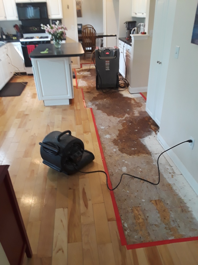 Ada, MI - After the hardwood floor has been removed, the edges taped, antimicrobial agent applied and the equipment set.