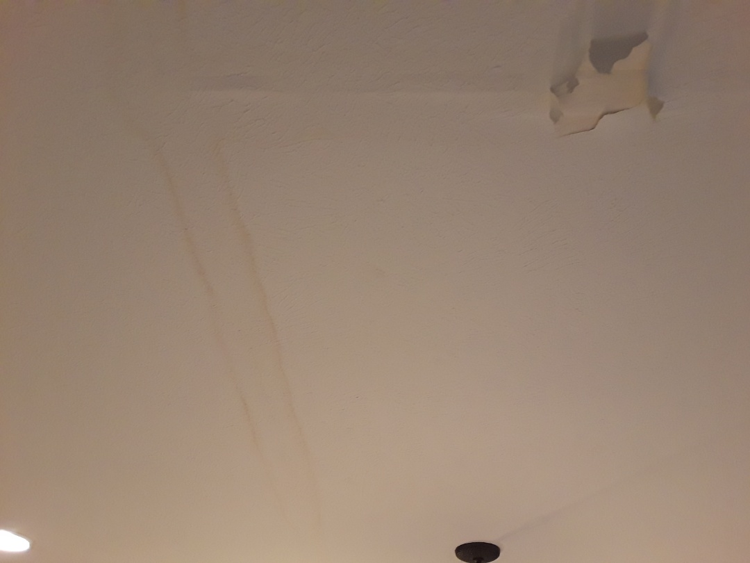 Hudsonville, MI - About to start fixing a finished basement ceiling caused by a leaking dishwasher