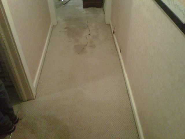 Grand Rapids, MI - Water damage in basement hallway.