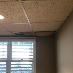 Grand Rapids, MI - During a heavy raid, water leaked through the roof. Damage to the ceiling.