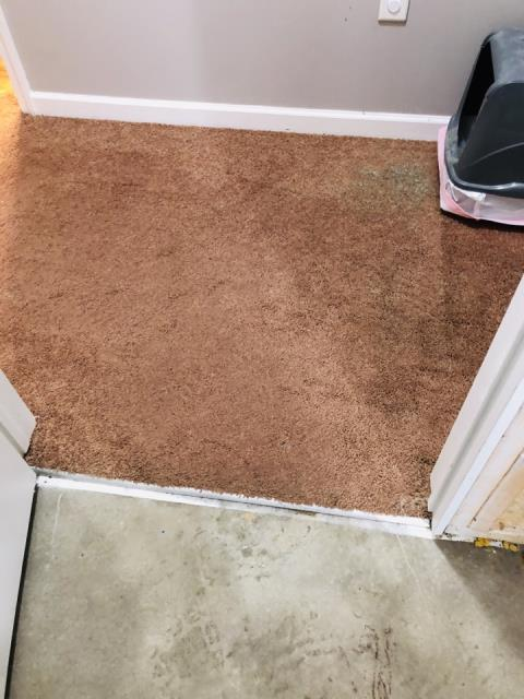 Grand Rapids, MI - Sump pump failure. Water in the entire basement. Wet carpet.