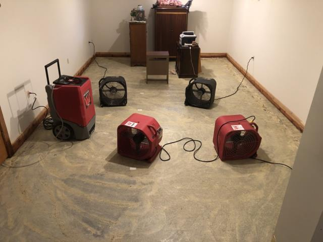 Grand Rapids, MI - Carpets been removed, drying equipment set up to dry water.