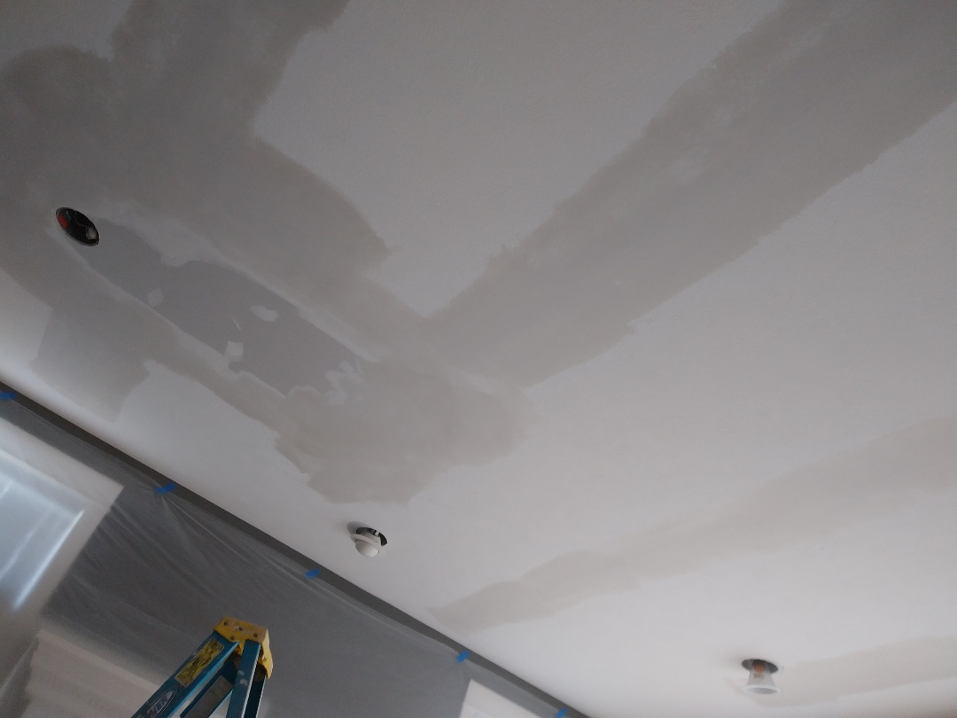 Grand Rapids, MI - Applied 2 coats of mud on patched areas.