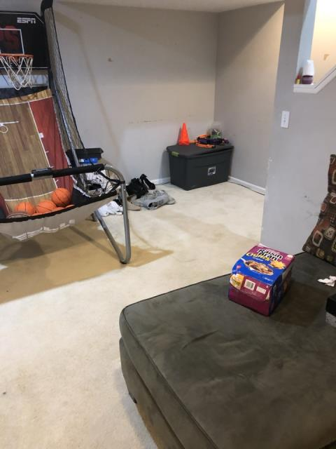 Grand Rapids, MI - Sump pump failure. Wet carpet in the basement. Heavy odor.