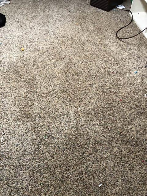 Grand Rapids, MI - Hot water heater broke. Put water in the basement recreation room. Water damage to the paneling and carpet.