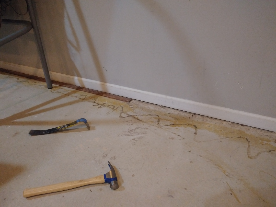Kentwood, MI - In the process of removing the carpet tack strip and base molding.