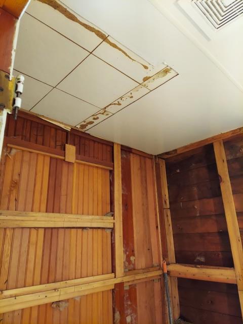 Grand Rapids, MI - Water damage to basement bathroom. Shower head broke. Water damage to shelving unit and vinyl flooring.