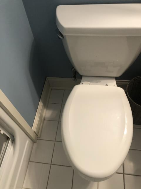 Grand Rapids, MI - Water damage to basement bathroom and bedroom from toilet overflow. Wet carpet and baseboards