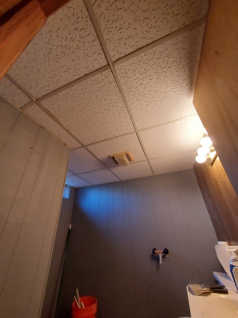 Grand Rapids, MI - New ceiling tiles in the basement bathroom.