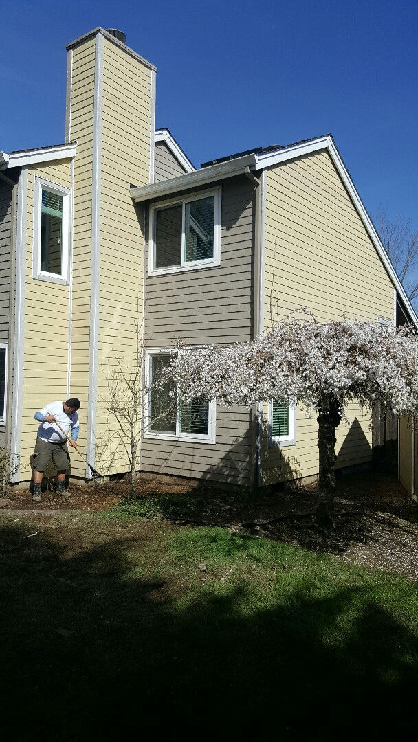 """Sherwood, OR - Siding replacement Sherwood. Dry rot repair. We installed new primed Hardie lap siding with 5"""" reveal to house."""