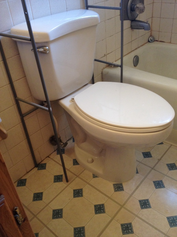 Stuart, FL - Replaced closet flange and reset toilet.