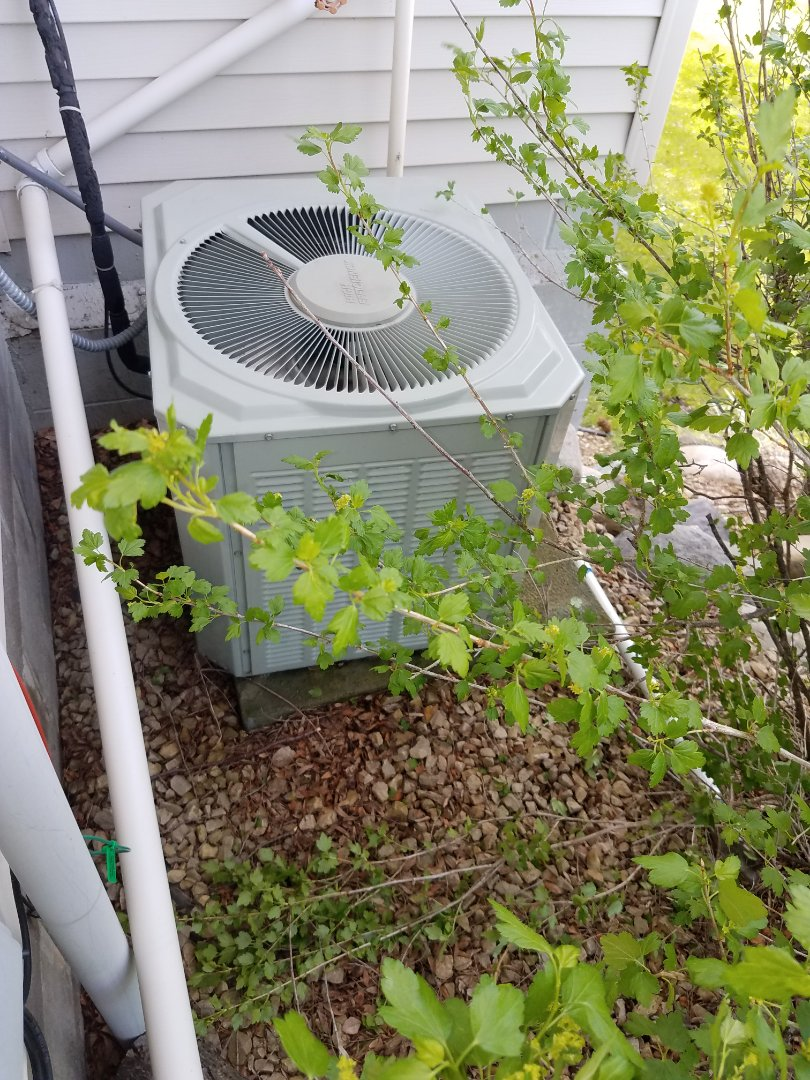 Plymouth, MN - AC tune up and clean on Trane unit in Loretto