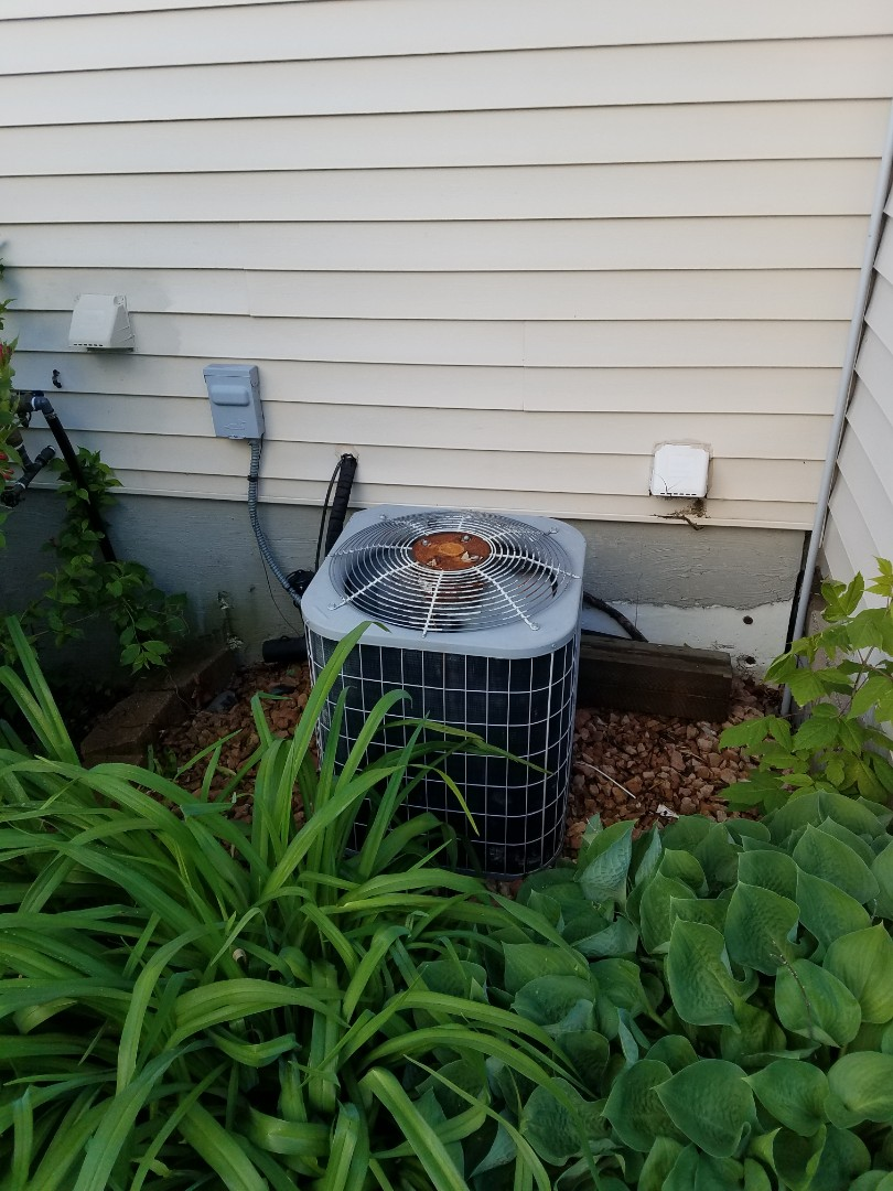 Saint Michael, MN - Carrier ac tune up and clean