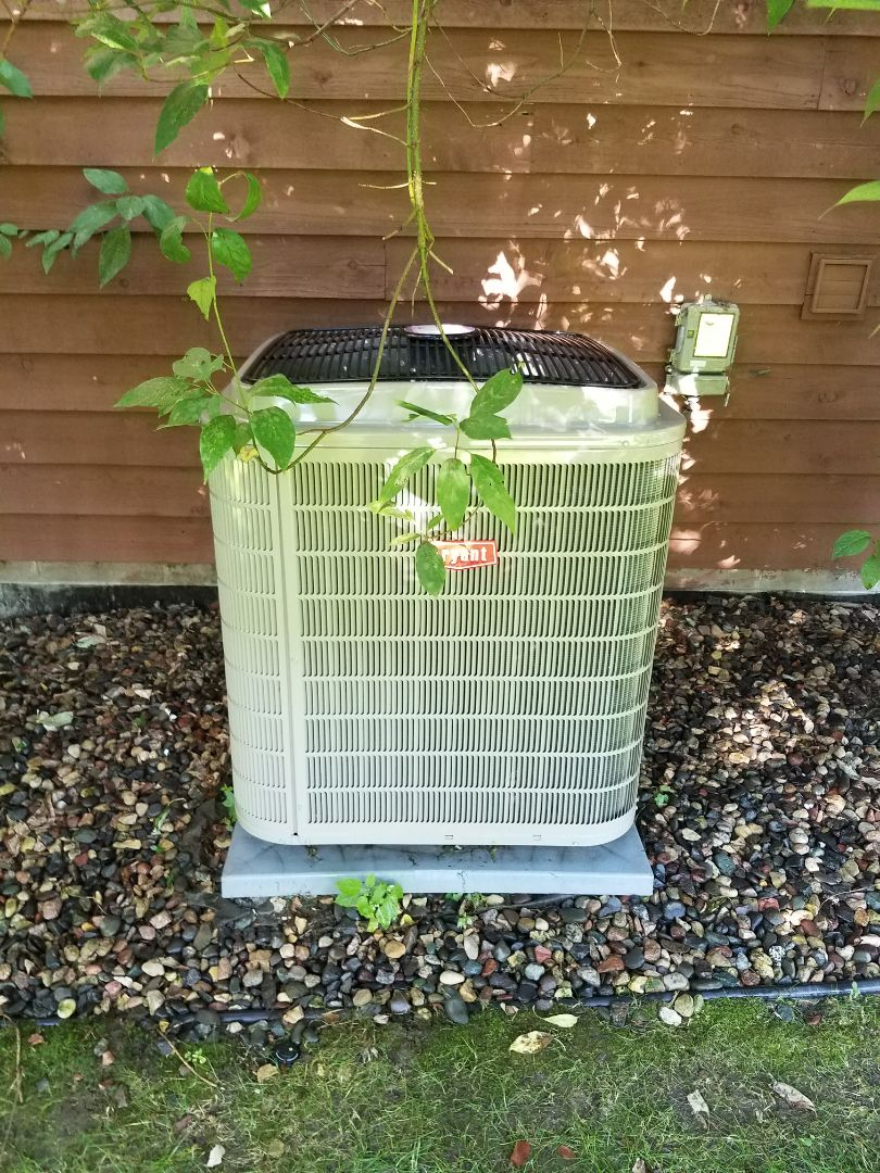 Hopkins, MN - Cooling maintenance. Performed tune up and cleaning on a Bryant air conditioner.