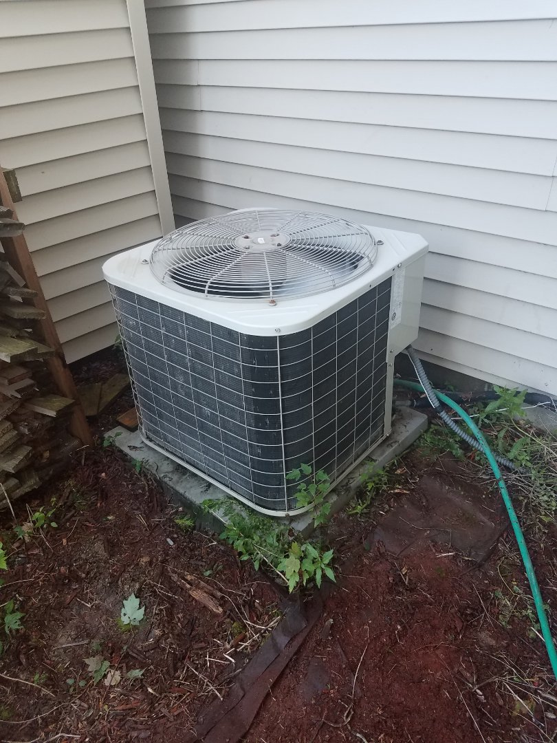 Ramsey, MN - AC tune up and clean on carrier unit in Ramsey