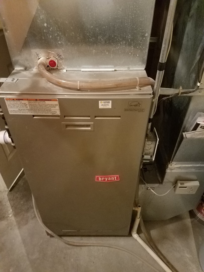 Osseo, MN - Diagnosed a Bryant furnace.