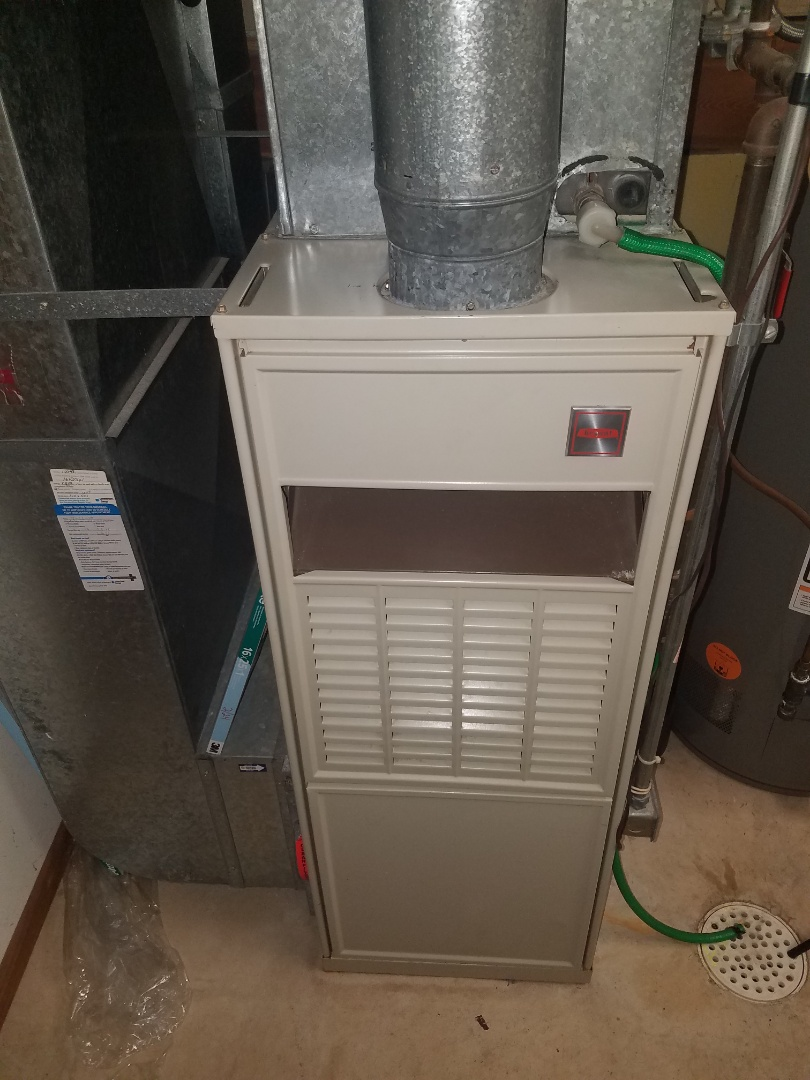 Maple Grove, MN - Furnace maintenance. Diagnosed a Bryant furnace.
