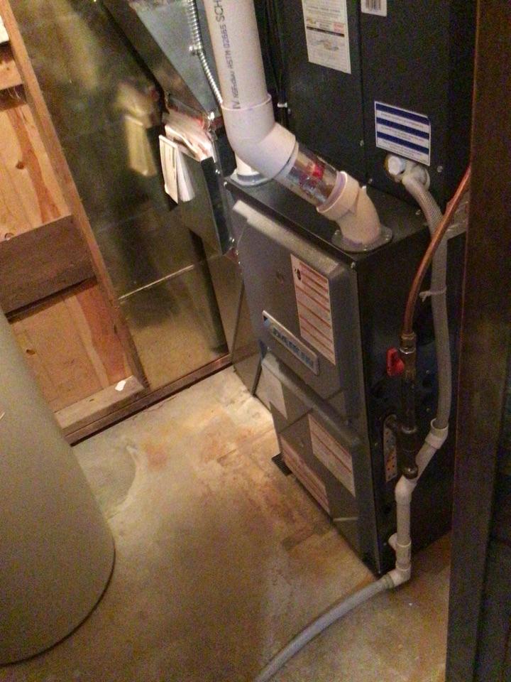 Corcoran, MN - Furnace tune up. Tune up on Daikin furnace