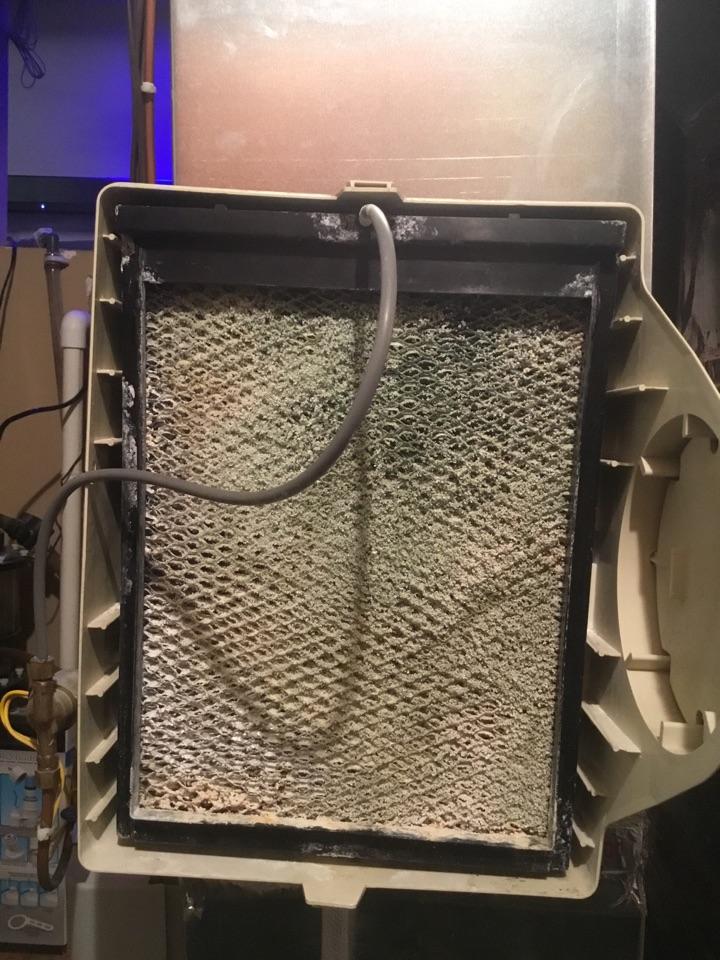 Medina, MN - Humidifier service. Humidifier is up and running!