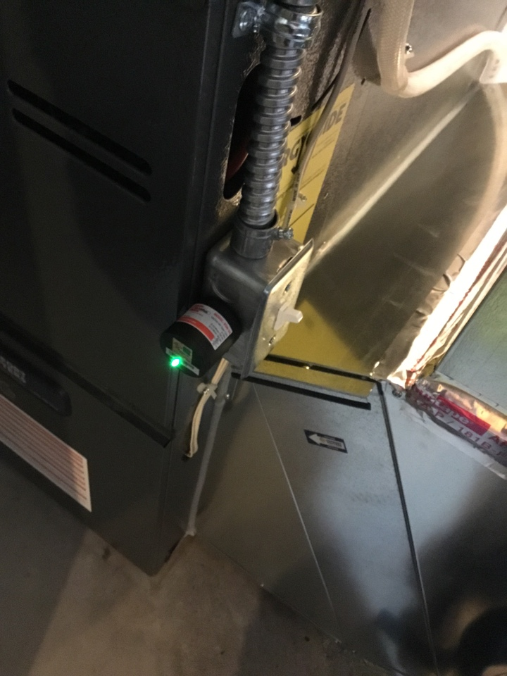 Delano, MN - Ac tune up, performed maintenance on Daikin air conditioner and installed surge protector