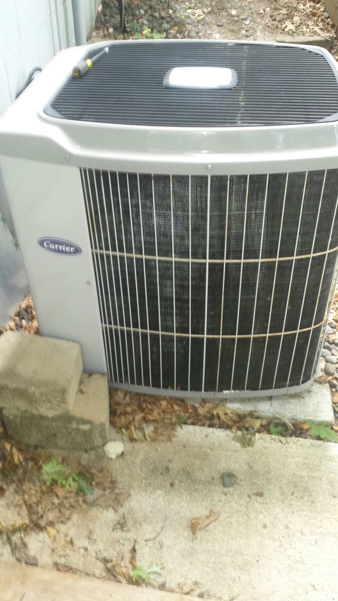 Ramsey, MN - Air conditioning service on a carrier air conditioner