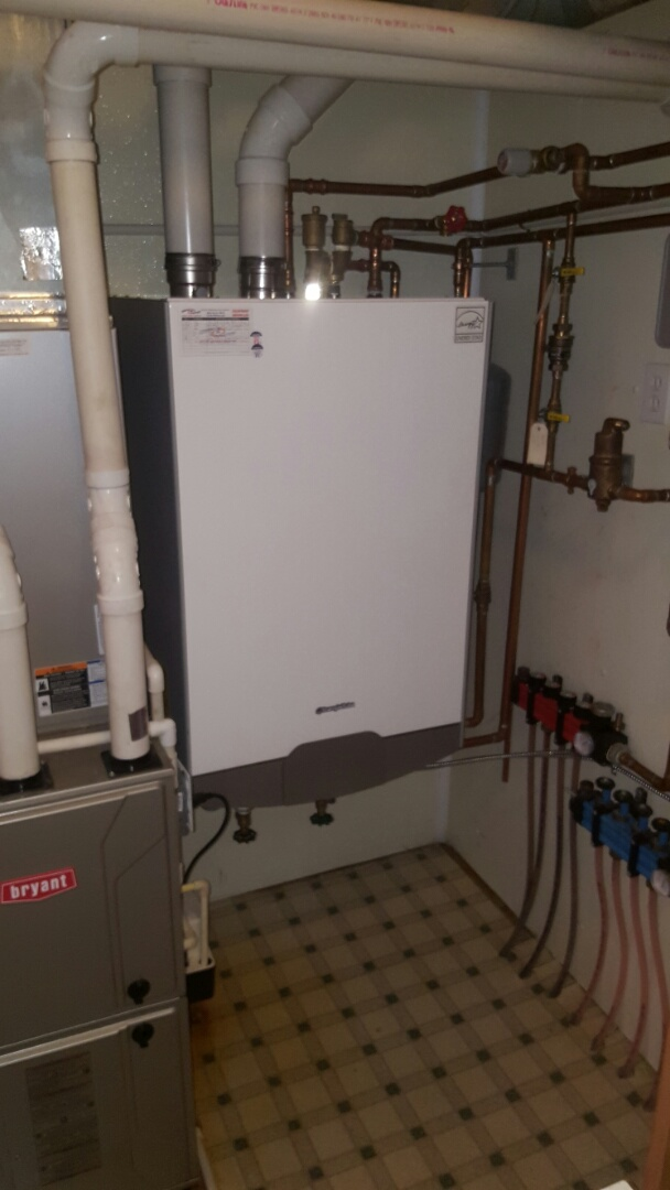 Maple Lake, MN - Heating service. Installed glycol and F1 boiler water treatment in a Triangle Tube Prestige Excellence boiler.