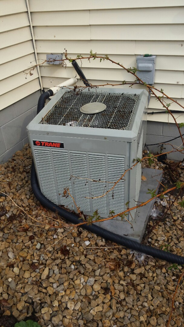 Rockford, MN - Air conditioner cleaning and tune up on a Trane