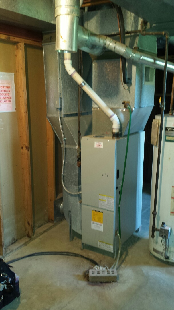 Loretto, MN - Furnace no heat.  Primary flue safety switch no longer operating
