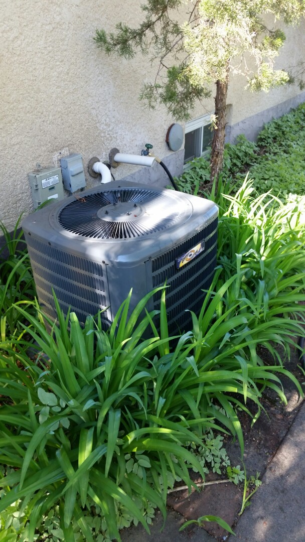 Osseo, MN - A/C maintenance clean and start up on Goodman unit in Osseo