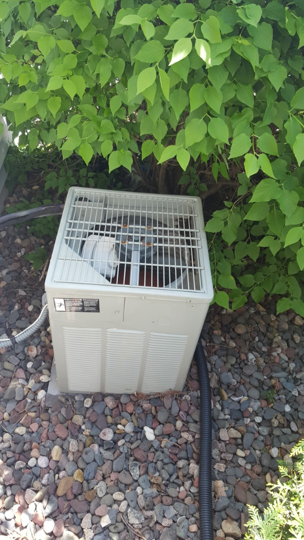 Osseo, MN - Cooling service. Diagnosed a bad condenser fan motor and capacitor on a Trane air conditioner.