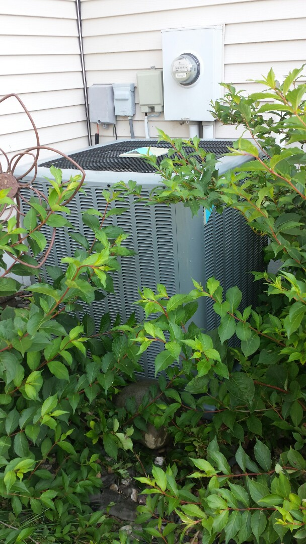 Corcoran, MN - A/C tune up and clean on Daikin unit in Corcoran