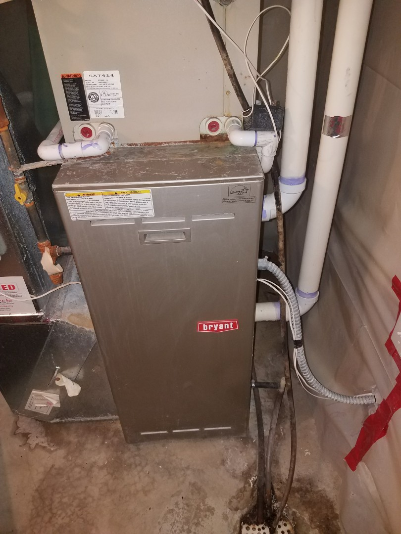 Blaine, MN - Furnace tune up on 90+% Bryant unit in Blaine