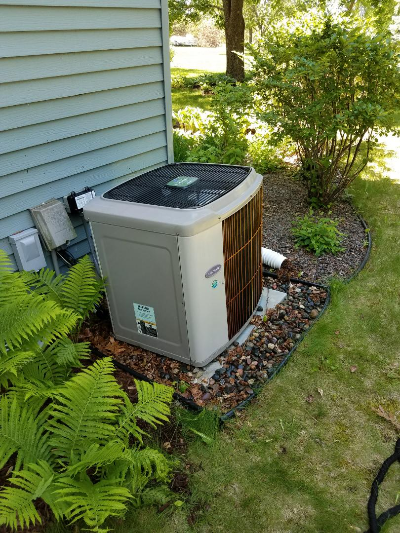 Maple Grove, MN - A/C tune up and clean on carrier unit in Maple Grove.