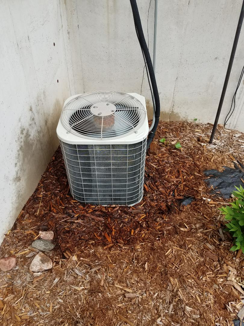 Elk River, MN - A/C tune up and clean on Bryant unit in Elk River