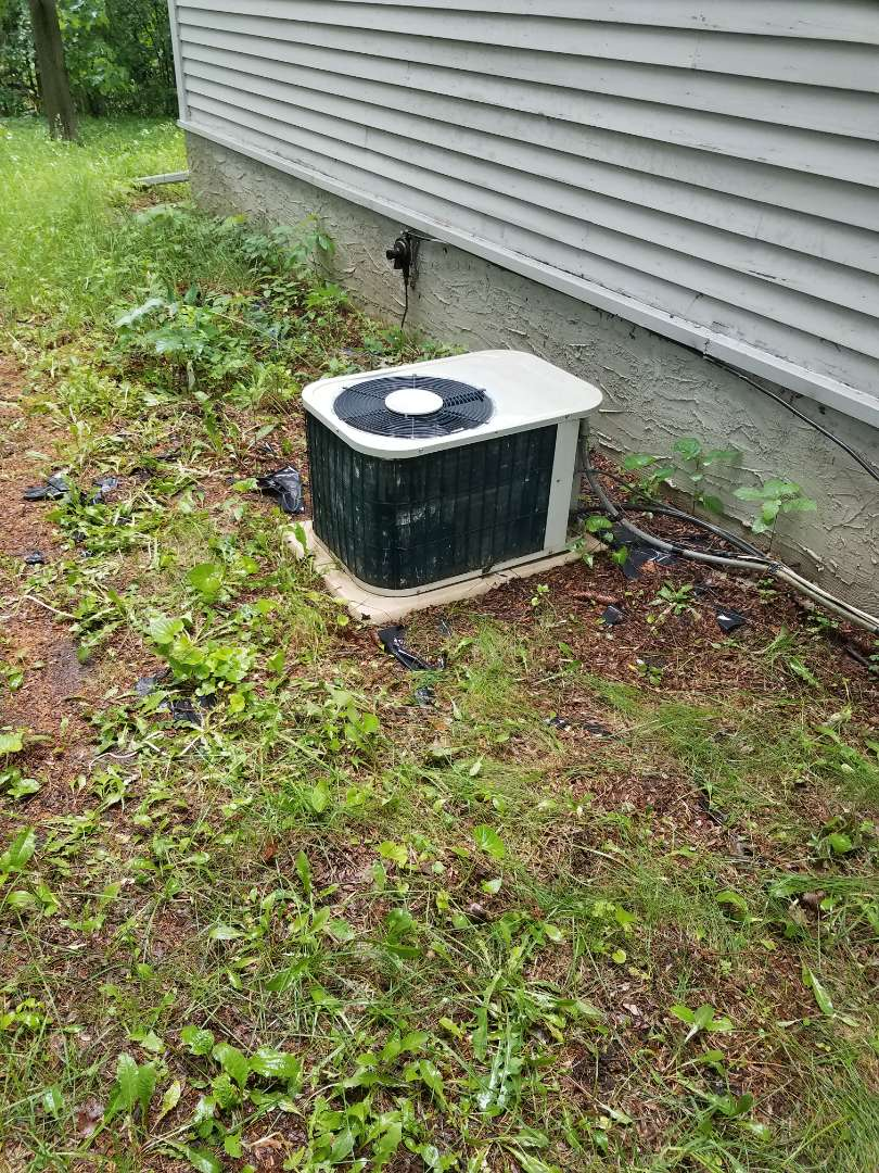 Delano, MN - Air conditioner cleaning and tune up on 2 Bryant systems