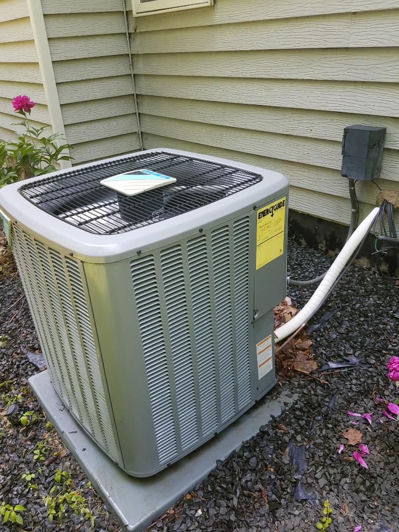 Rogers, MN - A/C tune up and clean on Daikin unit in hanover