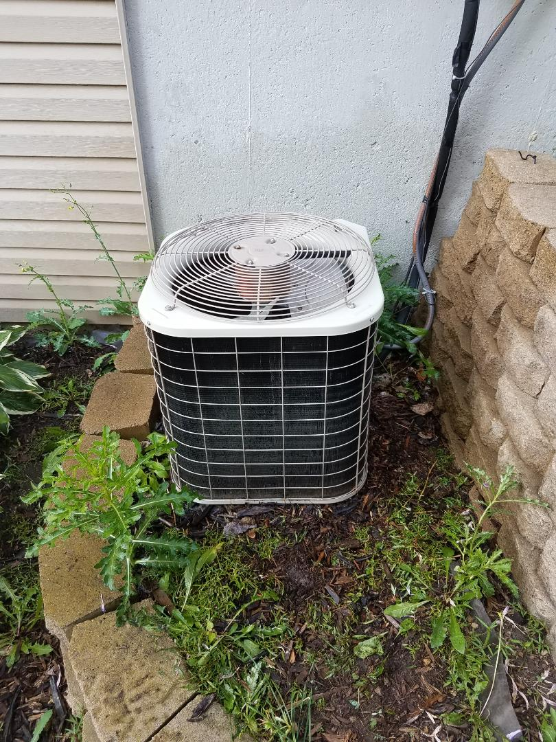 Osseo, MN - A/C tune up and clean on Bryant condensing unit in Maple Grove
