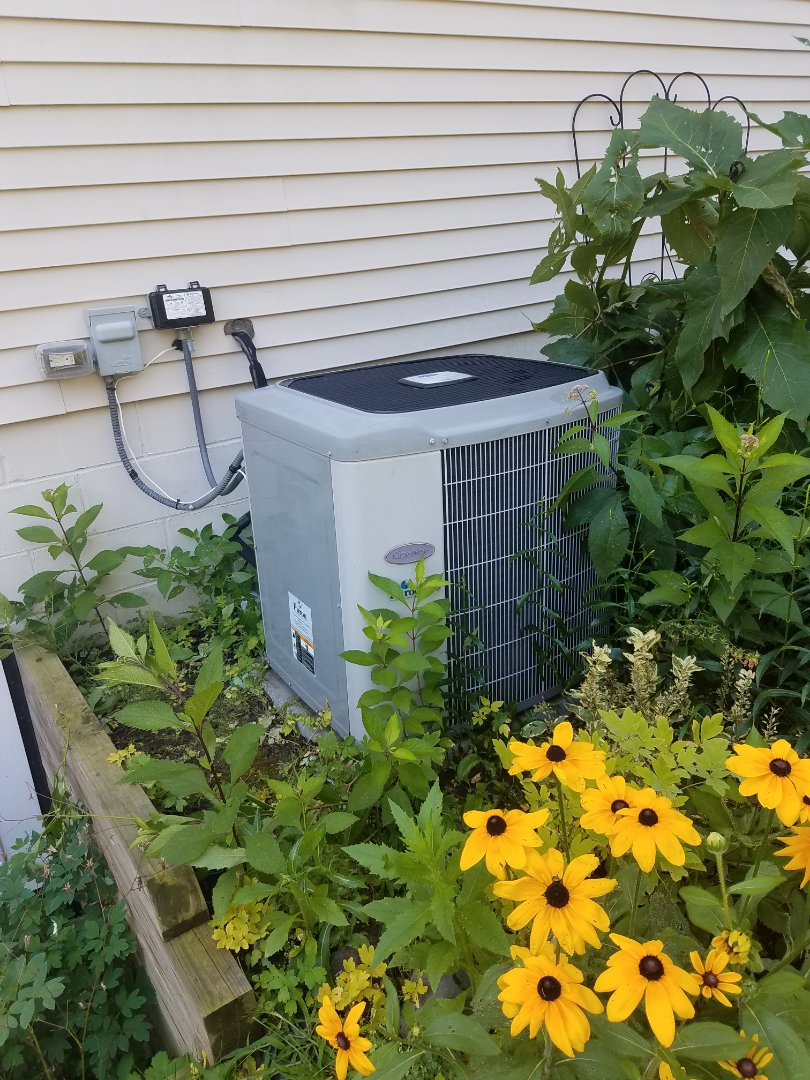 Rogers, MN - A/C tune up and clean on carrier condenser unit in Rogers
