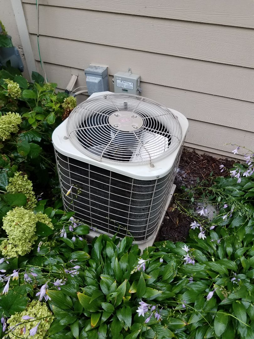 Excelsior, MN - Air conditioning tune up and cleaning on Bryant air conditioner
